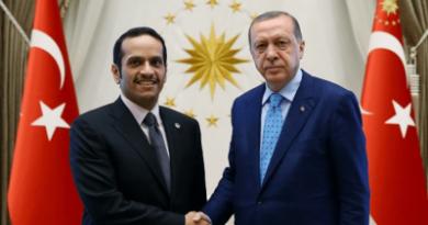 Recep Tayyip Erdogan and Sheikh Mohammed bin Abdulrahman bin Jassim Al Thani